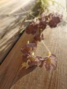 Bilde av Stilk med blomst blålige nyanser